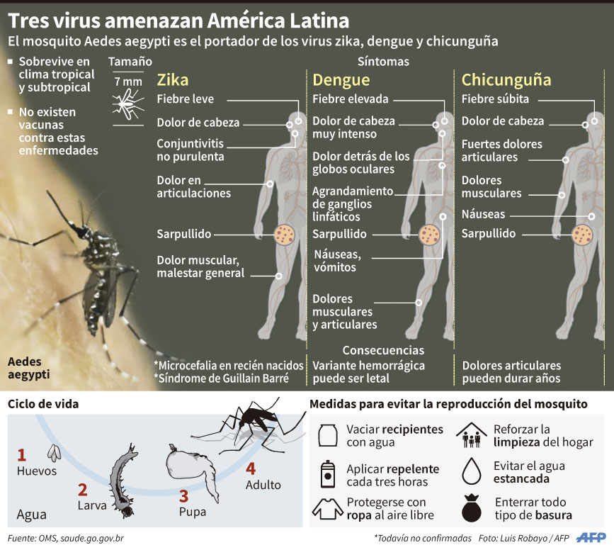OPS no descarta transmisión sexual del zika